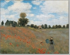 ms-monet-poppy-field