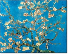 ms-van-gogh-blossoms
