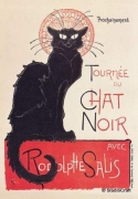 chat-noir-cat